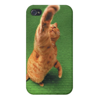 Ginger cat stretching out paw covers for iPhone 4