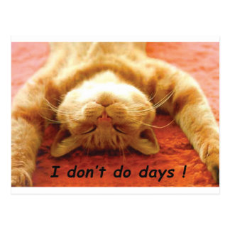 Ginger Cat T shirt, I don't Do Days Postcard