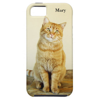 Ginger Cat Tough iPhone SE + iPhone 5/5S Case