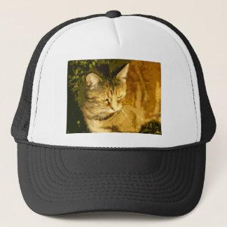 Ginger cat trucker hat