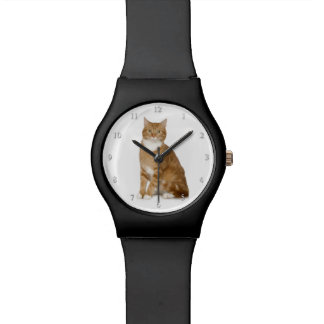 Ginger Cat Watch