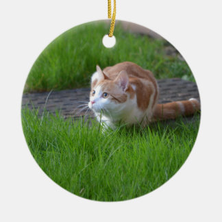 Ginger Cat Watching Christmas Ornament