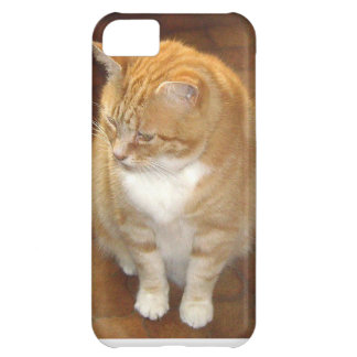 Ginger Cats Rule! Case For iPhone 5C