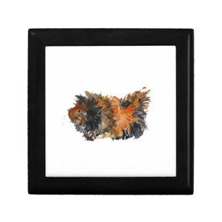 Ginger Fluffy Guinea Pig Watercolour Painting Gift Box