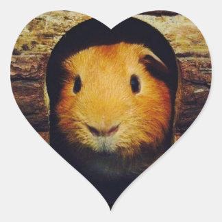 Ginger Guinea Pig Gifts Heart Sticker