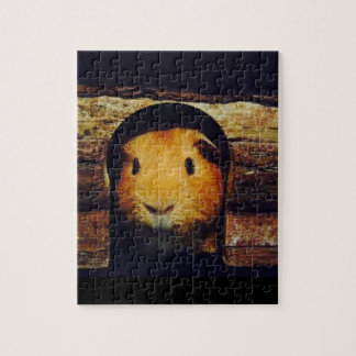 Ginger Guinea Pig Gifts Jigsaw Puzzle