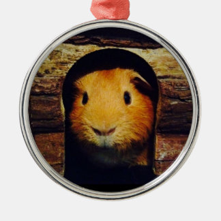 Ginger Guinea Pig Gifts Silver-Colored Round Decoration