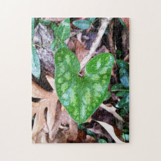 Ginger Heart Jigsaw Puzzle