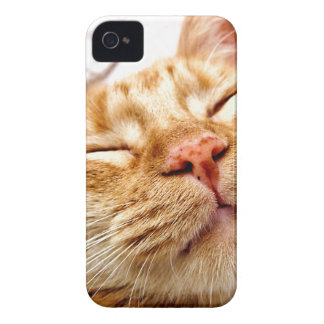 Ginger iPhone 4 Case-Mate Cases
