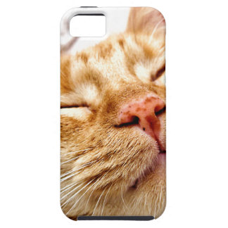 Ginger iPhone 5 Cover
