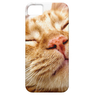 Ginger iPhone 5 Covers