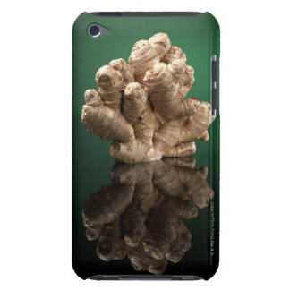 Ginger iPod Touch Case