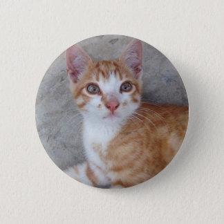 Ginger Kitten 6 Cm Round Badge