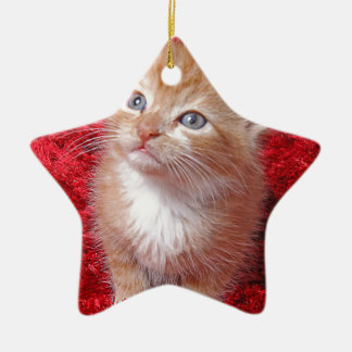 Ginger Kitten Ceramic Star Decoration