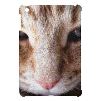 Ginger Kitten iPad Mini Cover