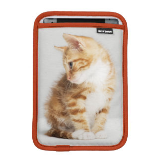 Ginger Kitten iPad Mini Sleeve