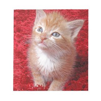 Ginger Kitten Notepad
