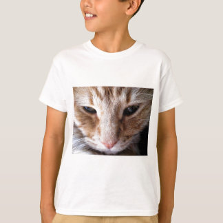 Ginger Kitten Tshirts