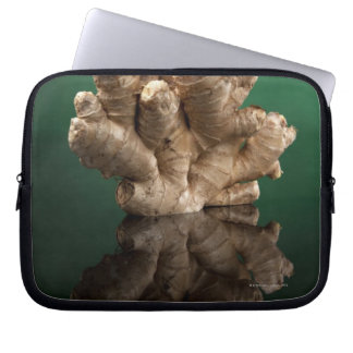 Ginger Laptop Sleeve