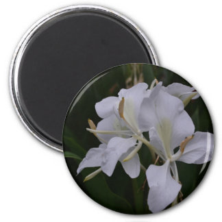 Ginger Lily-0105 6 Cm Round Magnet