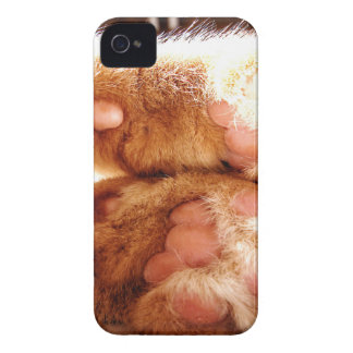 Ginger Paws iPhone 4 Case-Mate Cases