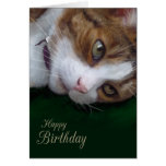 Ginger Tabby Cat Personalizable Happy Birthday