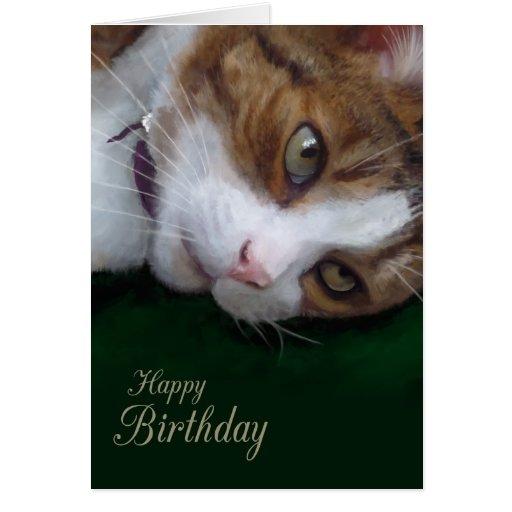 Birthday Orange Cat: Ginger Cat Cards, Photo Card Templates, Invitations & More