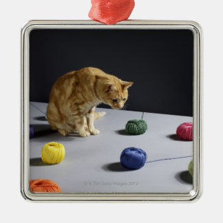 Ginger tabby cat sitting on table christmas ornament