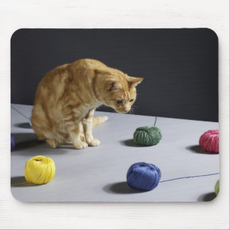 Ginger tabby cat sitting on table mouse pad