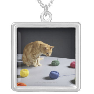 Ginger tabby cat sitting on table silver plated necklace