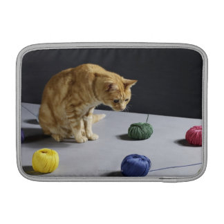 Ginger tabby cat sitting on table sleeve for MacBook air