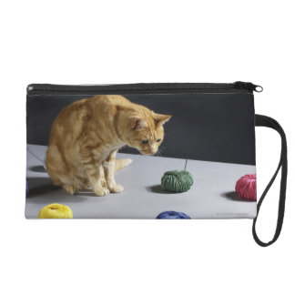 Ginger tabby cat sitting on table wristlet