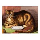 Ginger Tabby Cat Vintage Illustration Postcard