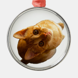 Ginger Tabby Kitten Silver-Colored Round Decoration