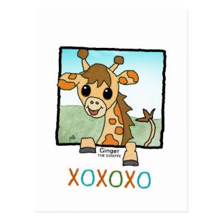 Ginger the Giraffe (Pathway Pet) Postcard