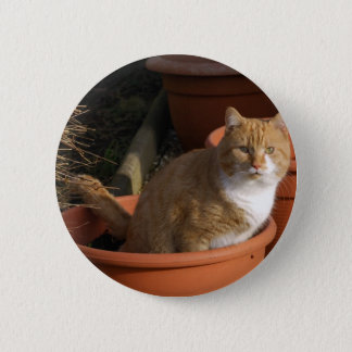 Ginger Tom Cat Button Badge