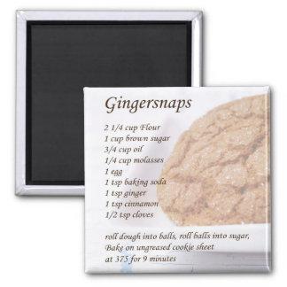 Gingersnaps Recipe Square Magnet