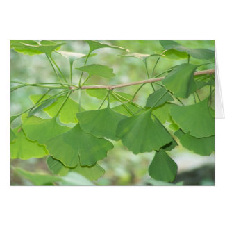 gingko card