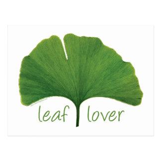 Gingko Leaf Postcard