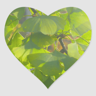 Gingko leaves in autumn sun heart sticker