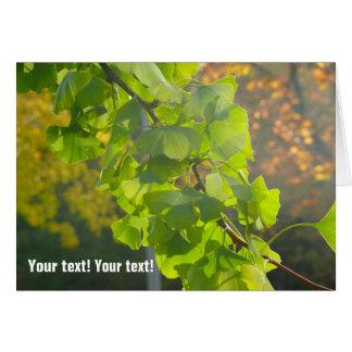 Gingko leaves in autumn sun (P) Card