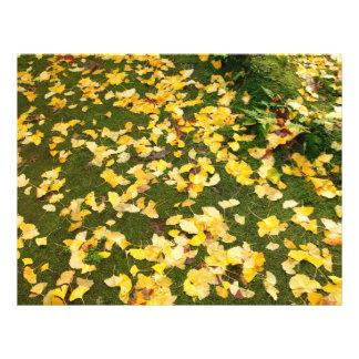 Ginkgo biloba leaves 21.5 cm x 28 cm flyer