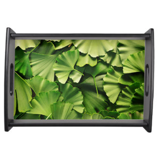ginkgo biloba tree leaf nature plant texture serving tray