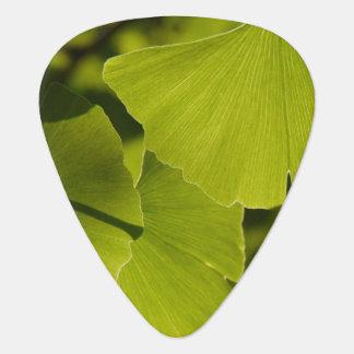 Ginkgo Leaves Guitar Pick