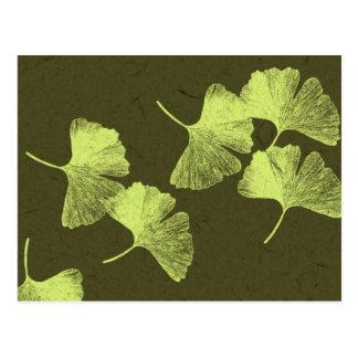 Ginkgo Leaves Postcard