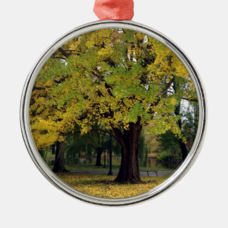 Ginkgo Tree in the fall Silver-Colored Round Decoration