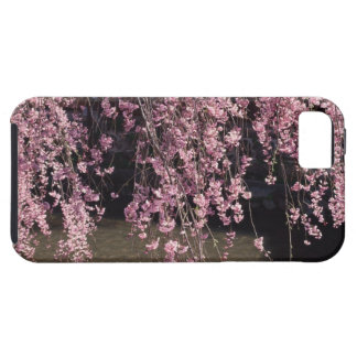 Gion, Kyoto Prefecture, Japan iPhone 5 Case