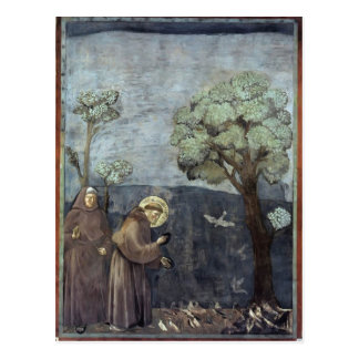 Giotto: St. Francis Preaching to the Birds Postcard