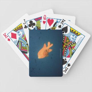 Girabaldi Bicycle Playing Cards
