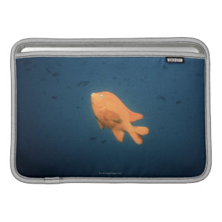 Girabaldi MacBook Sleeve